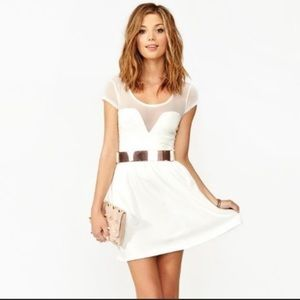 Nasty Gal White Fit and Flare Mesh Skater Dress